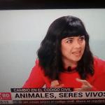 19 de diciembre: Hablamos del estatus jurídico de los animales en 'Buenos Días Madrid' (Telemadrid)
