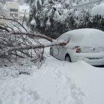 ¿Qué daños cubren los seguros tras temporales de nieve?