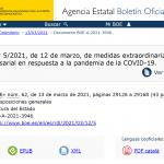 Medidas extraordinarias para apoyar la solvencia empresarial: moratoria concursal y ayudas económicas y procesales para autónomos/as y empresas
